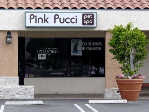 Pink Pucci Dog Grooming