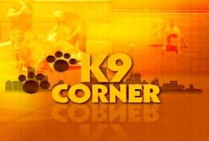 K9 Corner Dog Show on Torrance Citicable 3